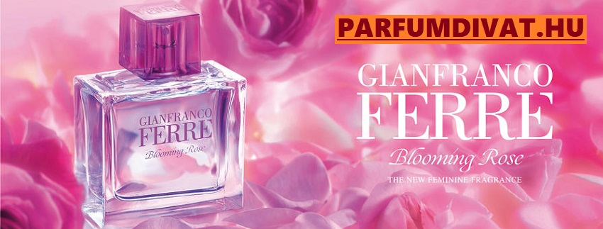 Ferre Blooming Rose