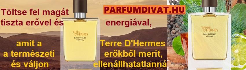 Hermés Terre D Hermes
