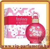 Britney Spears Fantasy in Bloom női parfüm
